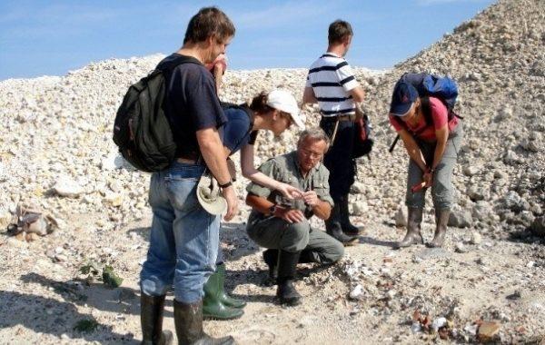 Fossilienexkursionen