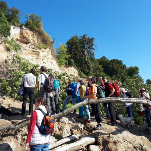 Tag Des Geotops (2)